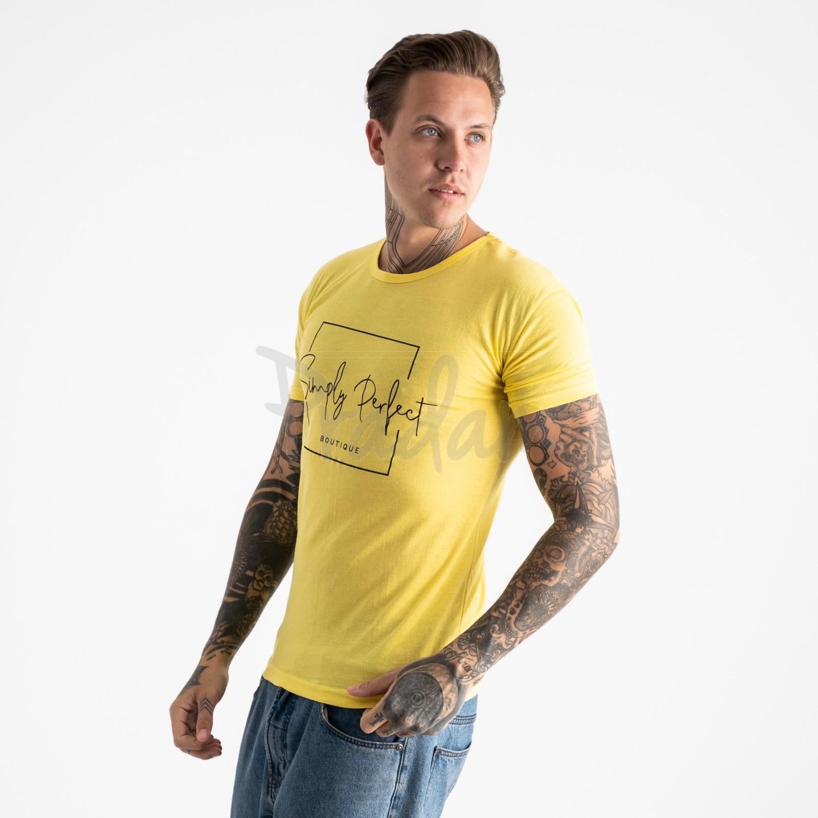 2603-6 желтая футболка мужская с принтом (4 ед. размеры: M.L.XL.2XL)