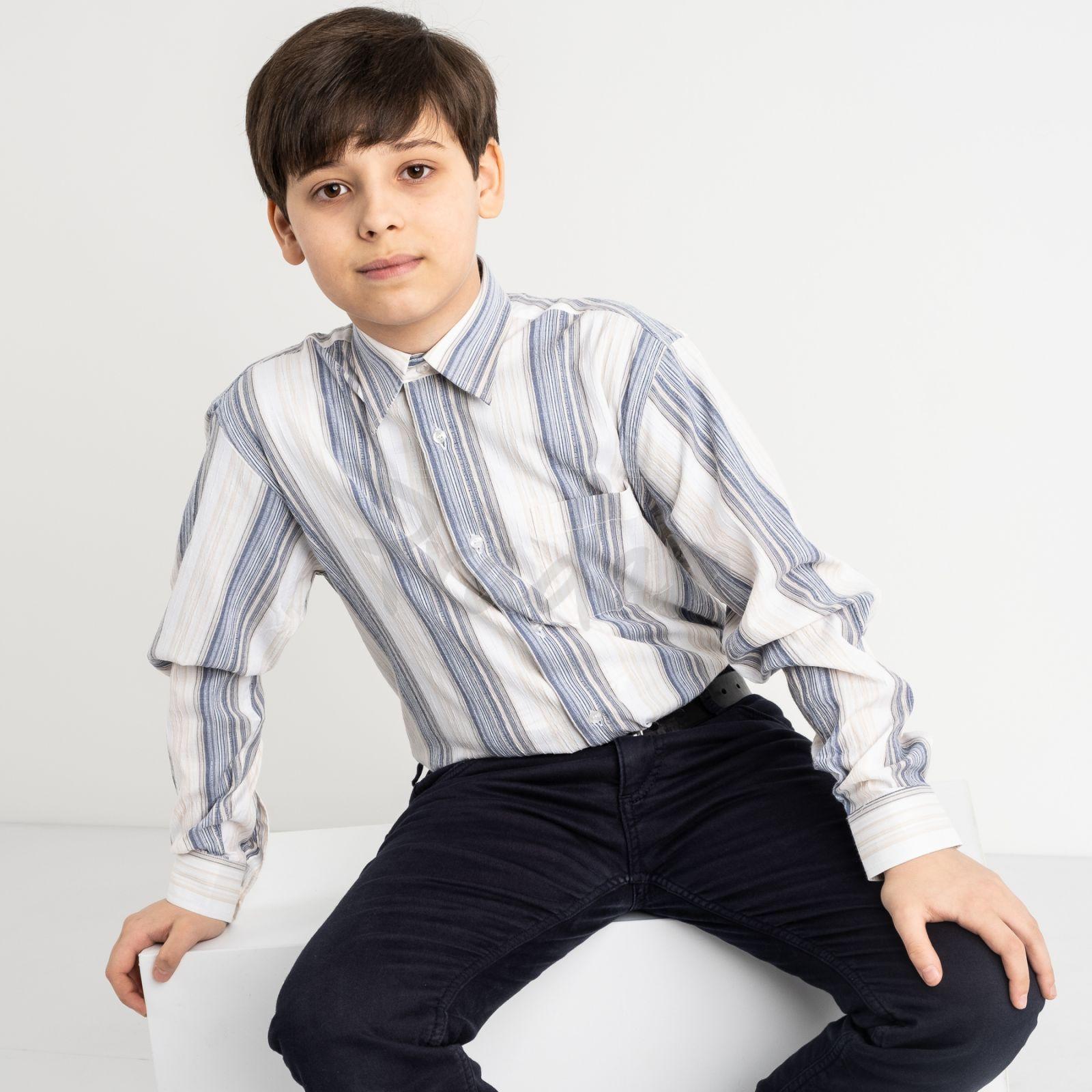 1908 Boston Public белая рубашка в полоску на мальчика 7-15 лет (5 ед. размеры: 30/31.32/33.33/34.34/35.35/36)