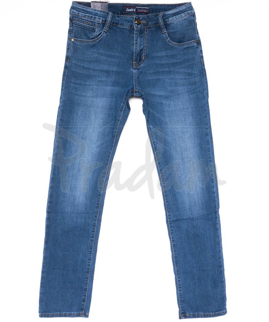 19213-2 Sunbird джинсы мужские синие весенние стрейчевые (30-40, 6 ед.)
