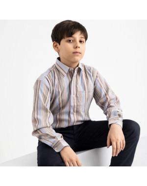 1909 Boston Public бежевая рубашка в полоску на мальчика 7-15 лет (5 ед. размеры: 30/31.32/33.33/34.34/35.35/36)