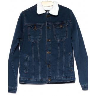 3061 Big Gastino куртка мужская джинсовая осенняя стрейчевая (M-XXL, 5 ед.) Big Gastino: артикул 1100215