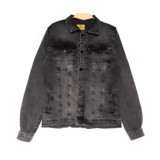 2065 Antrasit Big Gastino куртка джинсовая мужская серая весенняя стрейчевая (L-4XL, 5 ед.) Big Gastino: артикул 1104936