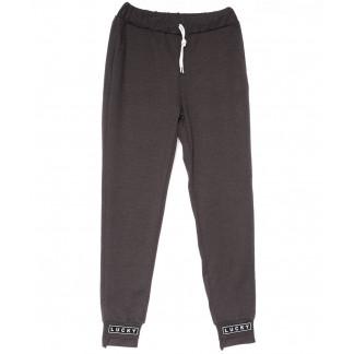 0206-44 серые Exclusive брюки женские спортивные весенние стрейчевые (42-48,норма, 4 ед.) Exclusive: артикул 1104960