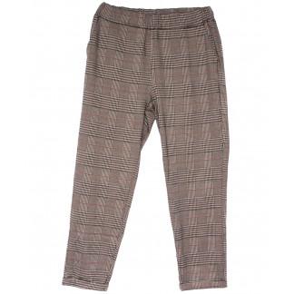 0257-50 коричневые Exclusive брюки женские в клетку весенние стрейчевые (50-54, 3 ед.) Exclusive: артикул 1104951