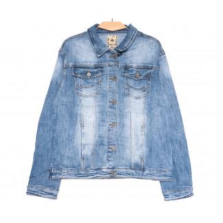3044 Dimarkis Day куртка джинсовая женская батальная синяя весенняя стрейчевая (4XL-9XL, 6 ед.) Dimarkis Day: артикул 1105503