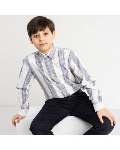 1908 Boston Public белая рубашка в полоску на мальчика 7-15 лет (5 ед. размеры: 30/31.32/33.33/34.34/35.35/36) Boston Public