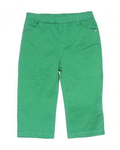 9518-N Sunbird шорты женские батальные тканевые зеленые стрейчевые (39-44, 6 ед.) Sunbird