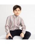 1904 Boston Public серая рубашка в полоску на мальчика 7-15 лет (5 ед. размеры: 30/31.32/33.33/34.34/35.35/36): артикул 1118412