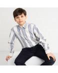 1908 Boston Public белая рубашка в полоску на мальчика 7-15 лет (5 ед. размеры: 30/31.32/33.33/34.34/35.35/36): артикул 1118416