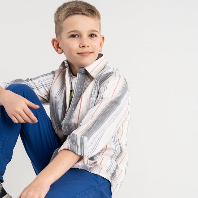 1903 Boston Public бежевая рубашка в полоску на мальчика 7-15 лет (5 ед. размеры: 30/31.32/33.33/34.34/35.35/36) Boston Public: артикул 1118411