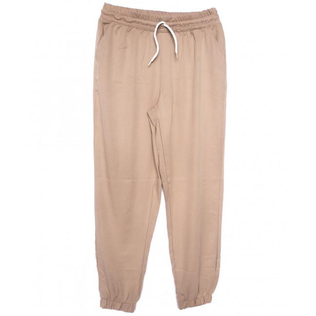 0237-50 бежевые Exclusive брюки женские спортивные батальные стрейчевые (50-54, 3 ед.) Exclusive: артикул 1109756